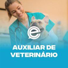 auxiliar-de-veterinario